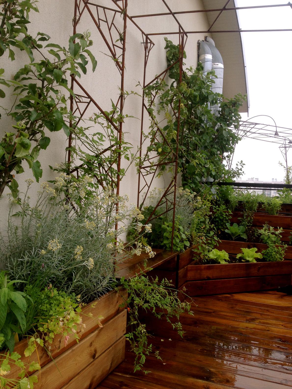 Terrasse 100% Comestible